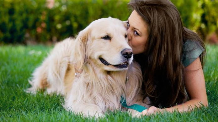 Rüyada Beyaz Köpek ve Kediyle Konuşmak