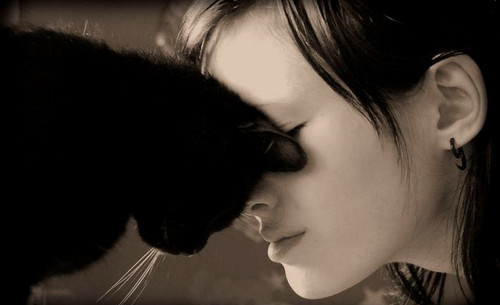 kedi ve kız