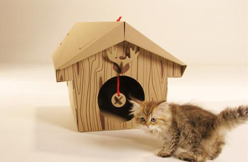 kedi evi