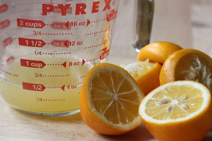 Limon ve su doğal pire ilacı için ihtiyacınız olan tek şey!