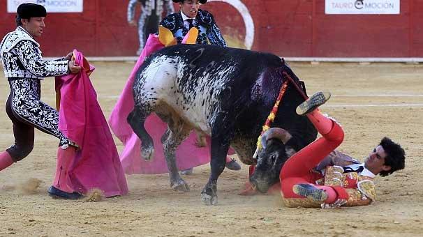 boğa matadoru öldürdü-2
