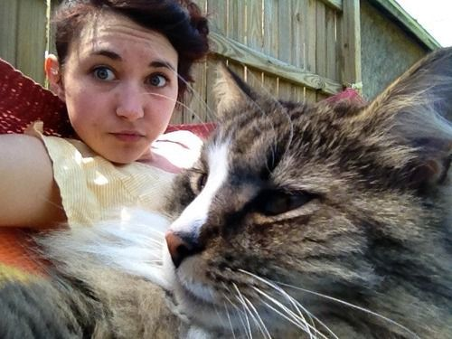 kedi-selfiesi