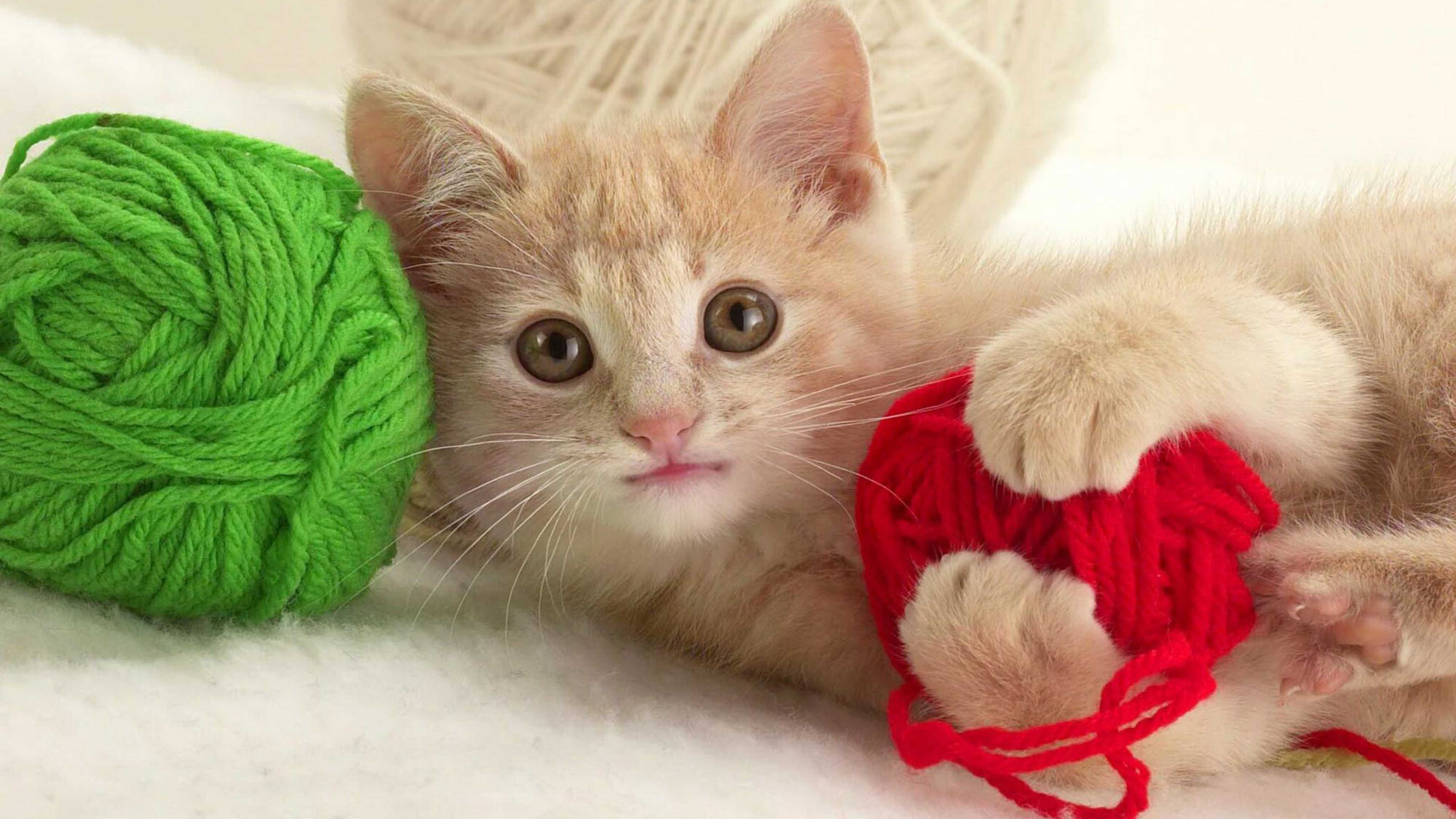 yün-yumakları-ile-oynayan-yavru-kedi