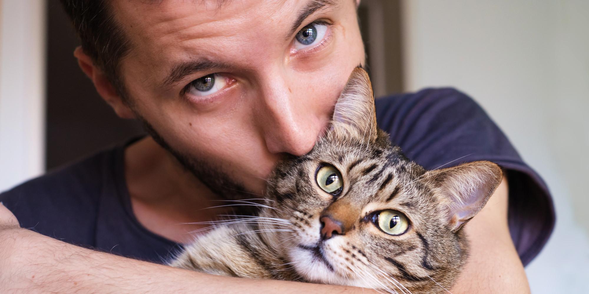 kedilerin-faydalari