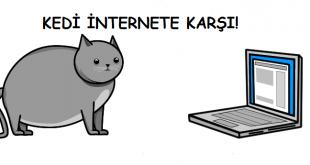 Özel Dosya: Kedi İnternete Karşı