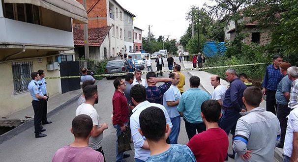 Milas Önder Gazetesi Sokak Köpeklerini Hedef Gösterdi 51